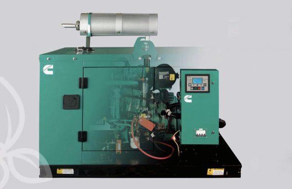 Máy phát điện Cummins Ấn Độ cũng là một thương hiệu có dòng máy một pha chạy khỏe, bền.