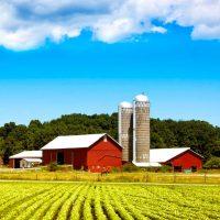 Khắc phục sự cố mất điện cho trang trại